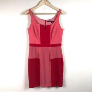 JAYGODFREY Pink Colorblock Sheath Dress - Size 8